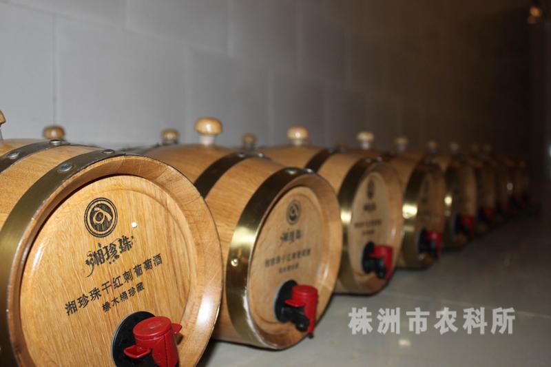 橡木桶装葡萄酒
